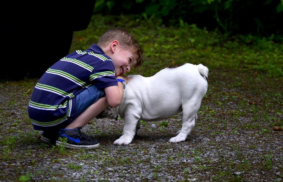 dogchild